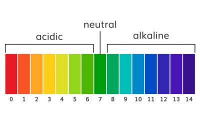 The Role of pH Level in Cleaning